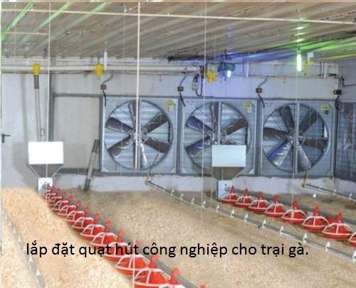 lắp đắt quạt hút công nghiệp 1000x1000x400 cho trại gà