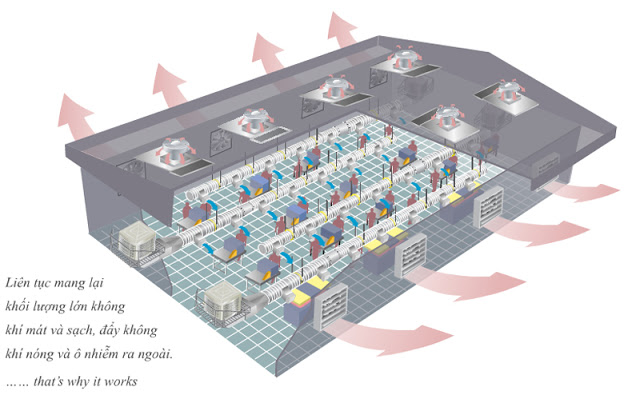 mô hình hệ thống làm mát nhà xưởng tại Bình Dương